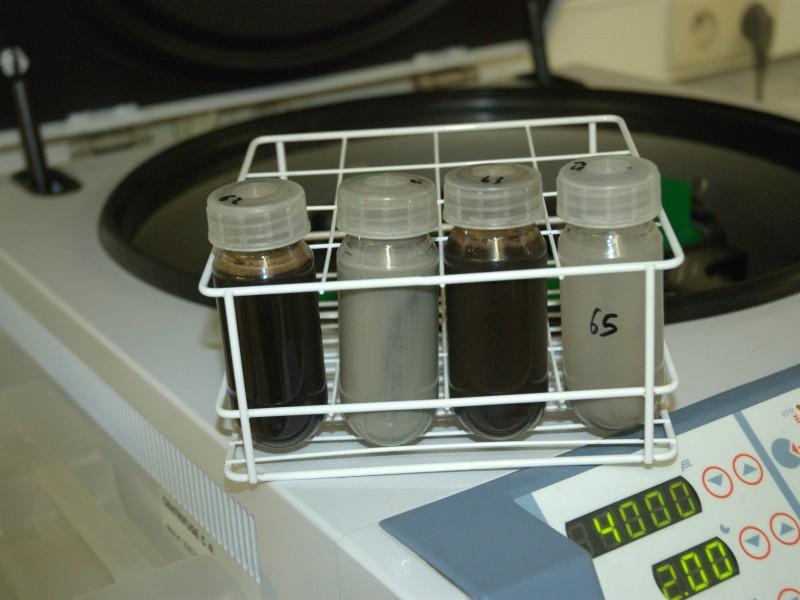06 Neutralized sample