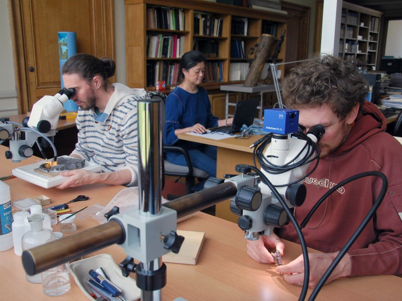 07 Study of fossils from India by researchers Floréal Solé (left), Eric De Bast (right), and collaborator Haiyan Tong (back)
