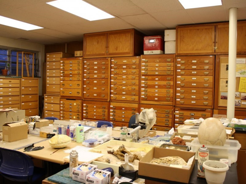 02 Main collection storage room