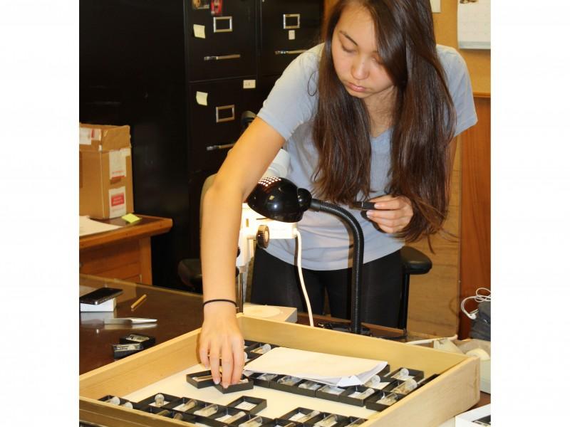 03 Duke University work-study student Isabelle Clark organizing DFP collections