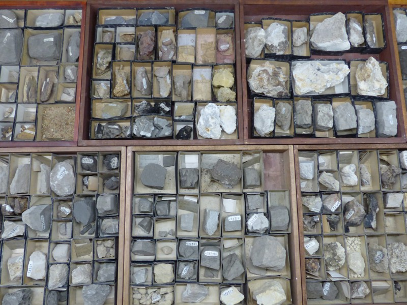 04 Rock samples from the Landana section allowing the reconstruction of the Paleogene series in this area of central Africa (RMCA collections)