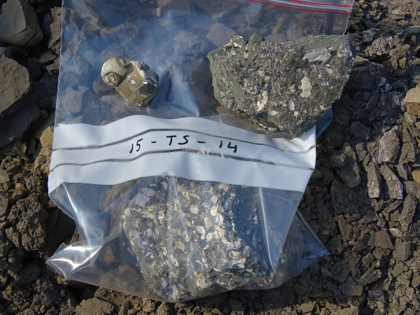 08 A sample collected for isotope and microfossil analyses