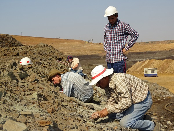 02 The work begins slowly to relocate fossil layers. From front to back: Kishor Kumar (Wadia Inst.), Satich (Garhwal Univ.), Thierry Smith (RBINS), Ken Rose (Johns Hopkins Univ.)