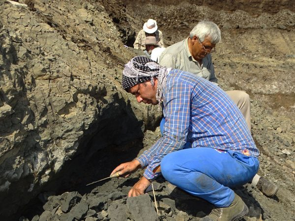 10 Waqas Mirza (front) and Rajendra Rana (back) find a very thin layer with vertebrate remains
