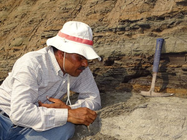 03 Kishor scrutes the sandy channel for fossils