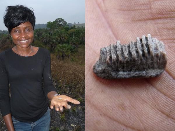 16 Nicole Kitambala Yaya (CRGM) showing a fossil Myliobatis ray tooth just discovered